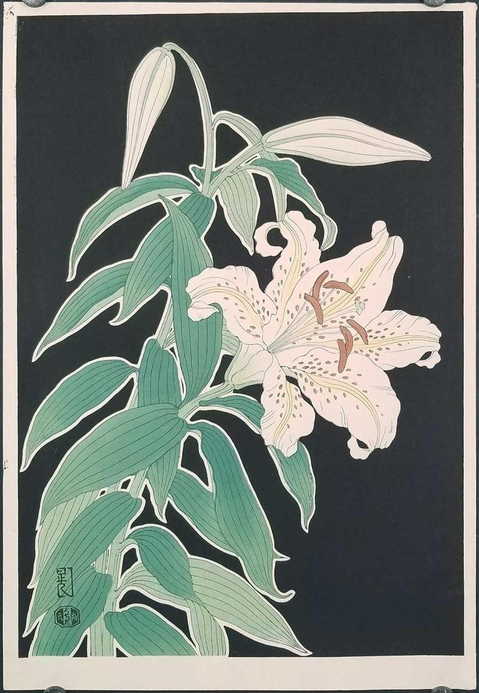 Japanese woodblock print of a white lily flower. FLOWERS - LILY.