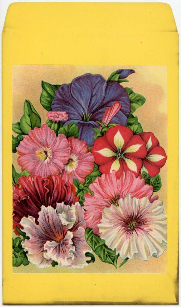 Mixed flower seed packet (UNUSED without seeds). FLOWERS.