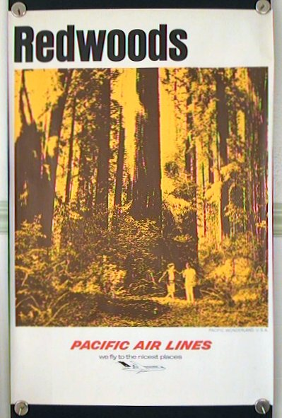 Redwoods. Pacific Wonderland U.S.A. Pacific Air Lines - we fly the nicest places. PACIFIC.