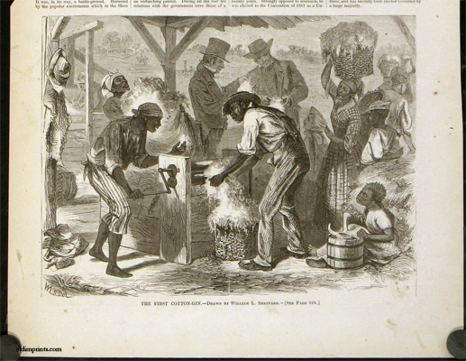 The First Cotton-Gin. AFRICAN AMERICAN HISTORY.