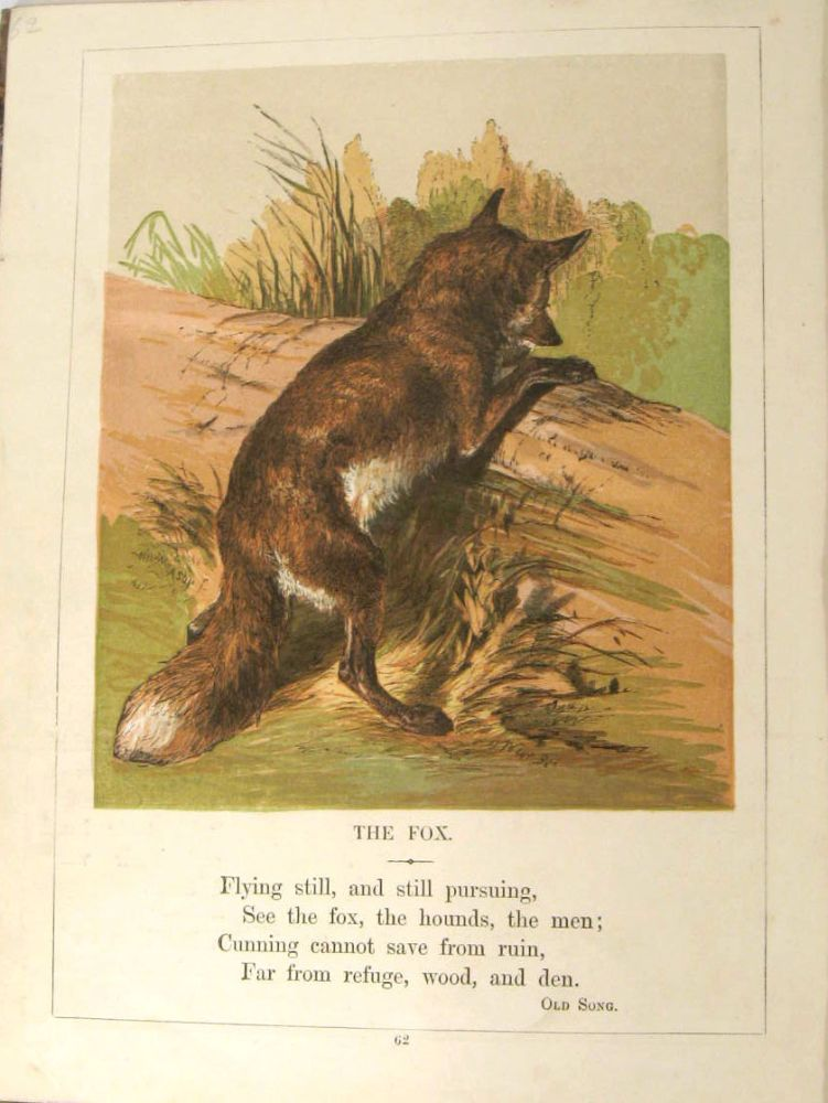 The Child's Pictorial Museum of Birds, Beasts, and Fishes. VICTORIAN ANIMALS - COLOR PLATES, William Wordsworth.