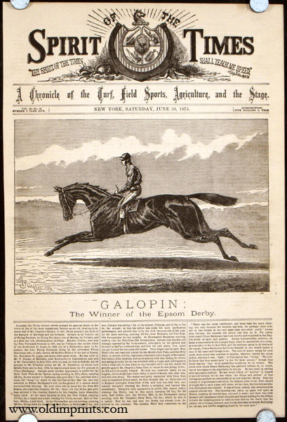 Galopin: The Winner of the Epsom Derby. HORSE RACING.