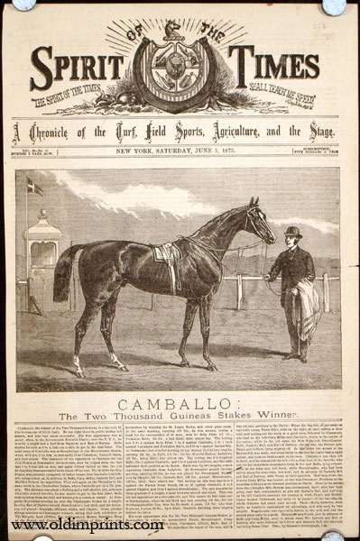 Camballo: The Two Thousand Guineas Stakes Winner. HORSE RACING.