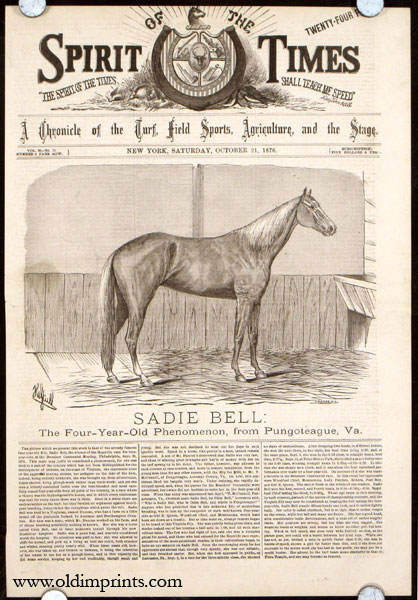 Sadie Bell: The Four-Year-Old Phenomenon, from Puntoteague, Va. HORSE RACING.
