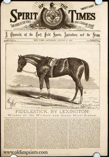 Fiddlestick, By Lexington: Winner of the Withers and Ocean Hotel Stakes. HORSE RACING.