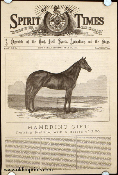 Mambrino Gift: Trotting Stallion, with a Record of 2:20. HORSE RACING.