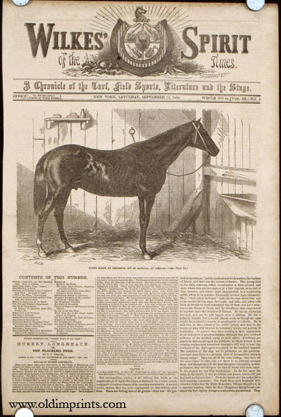 Daniel Boone, by Lexington, Out of Magnolia, by Glencoe. HORSE RACING.