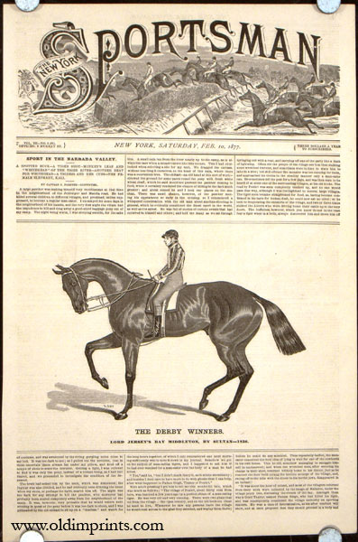 The Derby Winners. Lord Jersey's Bay Middleton, by Sultan---1836. HORSE RACING.
