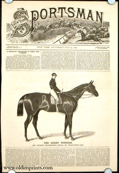 The Derby Winners. Sir Gilbert Heathcote's Amato, by Velocipede---1836. HORSE RACING.