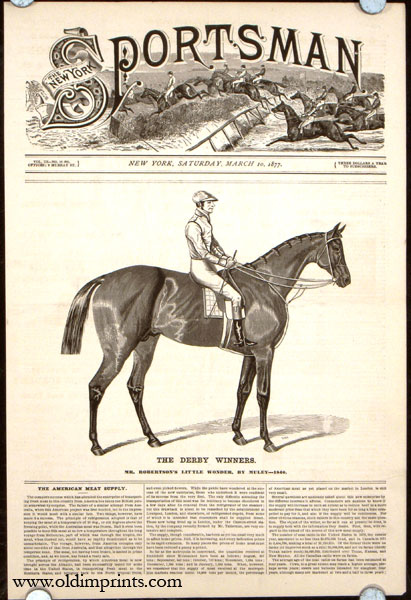 The Derby Winners. Mr. Robertson's Little Wonder, by Muley---1840. HORSE RACING.
