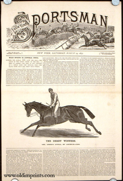 The Derby Winners. Col. Anson's Attila, by Colwick---1842. HORSE RACING.