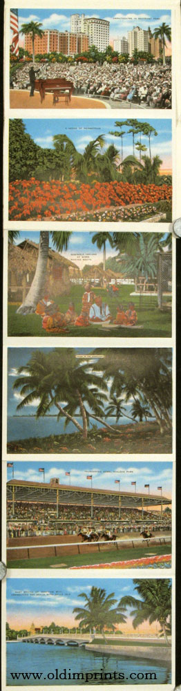 "Souvenir of Miami, Florida ""The Magic City"" FLORIDA - MIAMI."