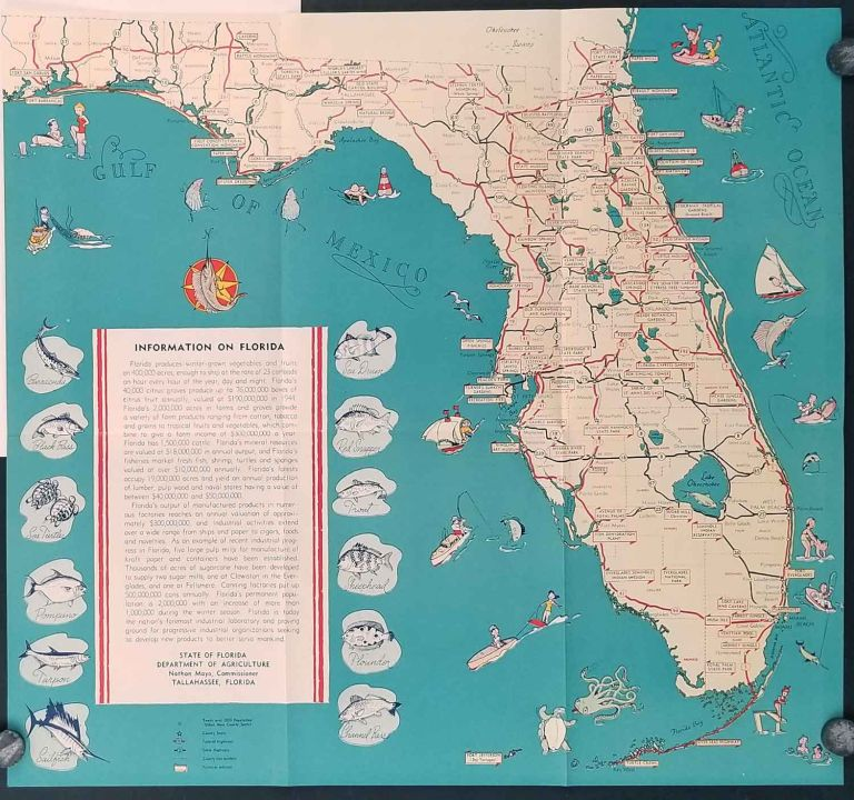 After Victory. Map title: Information on Florida. FLORIDA.