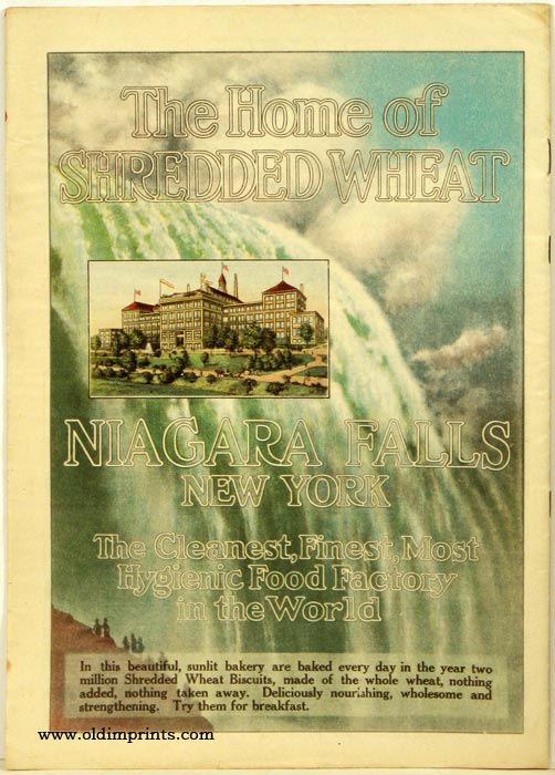 Sunday Magazine of the Minneapolis Journal. NEW YORK - NIAGARA FALLS.
