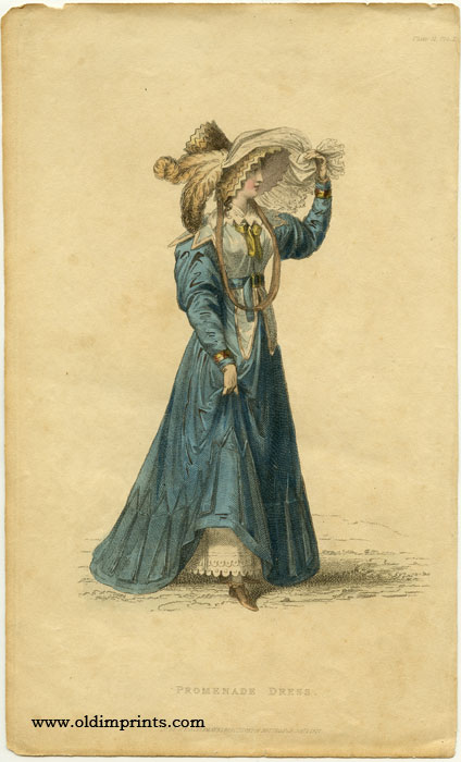Promenade Dress. 1820s FASHION.