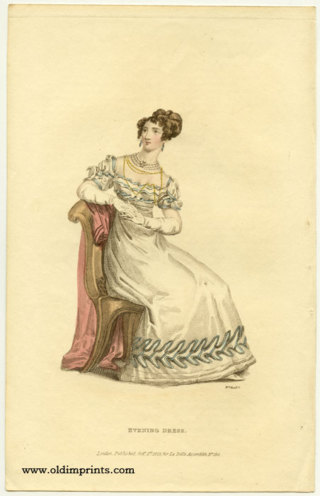 Evening Dress. 1820s FASHION.