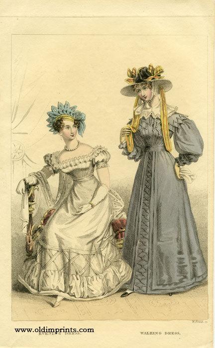 Evening Dress. Walking Dress. 1820s FASHION.