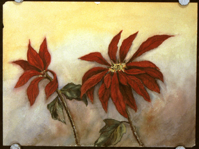 Untitled watercolor of poinsettias. POINSETTIA.