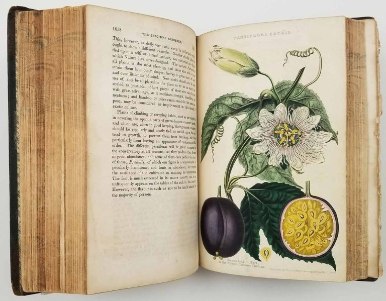 The Practical Gardener. Volume I & II. [14 handcolored plates]. FRUIT, FLOWERS ANTIQUE BOTANICALS.
