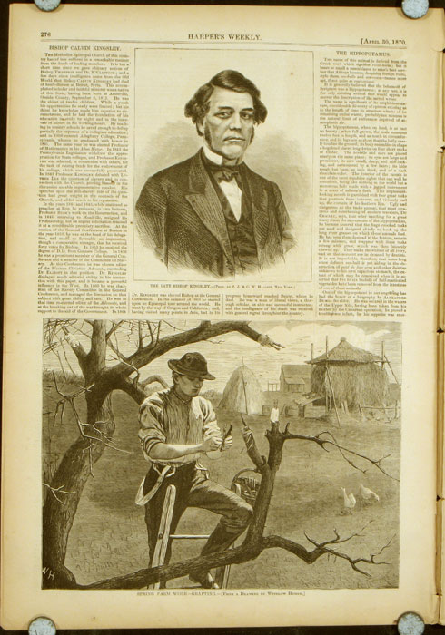 Harper's Weekly. COMPLETE ISSUE, Front cover illustration: Grandmamma. WINSLOW / NATIVE AMERICAN INDIANS HOMER.