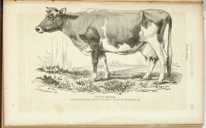 Report of the Commissioner of Agriculture for the Year 1867. AGRICULTURE - 19th CENTURY UNITED STATES.
