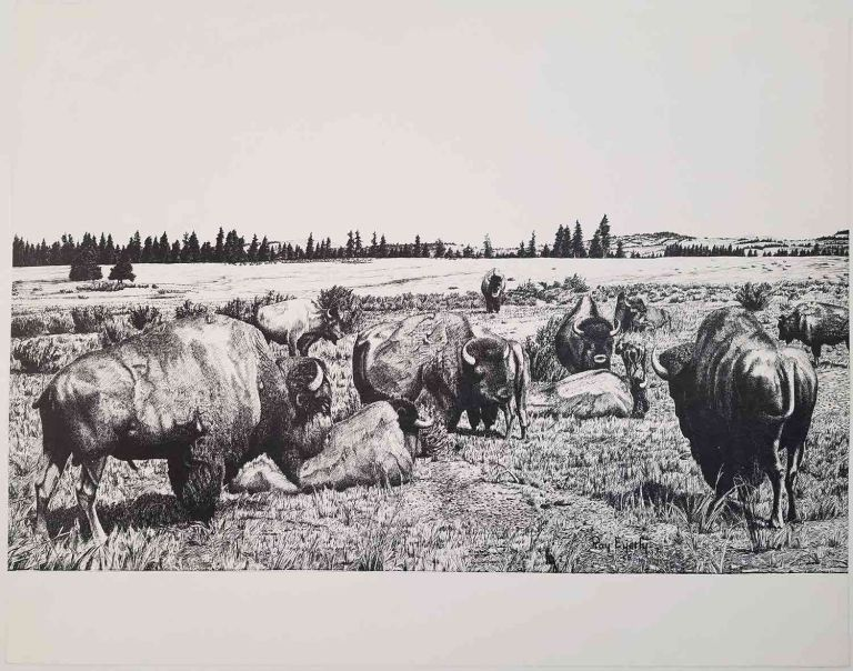 Ray Eyerly - LOT OF 5 PRINTS. AMERICAN WEST - BISON.