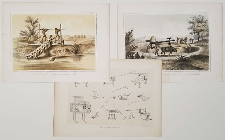 Chinese Irrigating Machine Worked by a Buffalo. Chinese Irrigating Machine Worked by Men. Various Chinese Implements. LOT OF 3 PRINTS. CHINA - PERRY EXPEDITION.