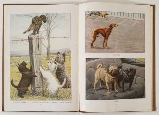 The Book of Dogs. An Intimate Study of Mankind's Best Friend. DOGS, Ernest Harold Baynes, Louis...