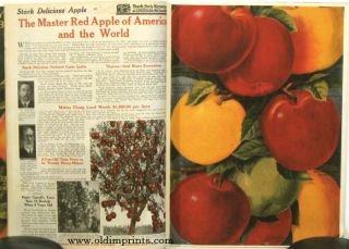 Year Book of Stark Bro's Nurseries & Orchards Co. (Stark Bro's Prize Fruits & Trees).