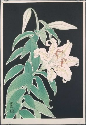 Japanese woodblock print of a white lily flower. FLOWERS - LILY