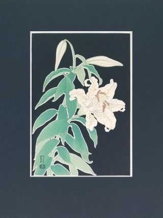 Japanese woodblock print of a white lily flower.