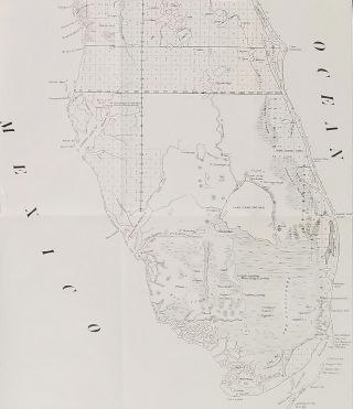 A Plat Exhibiting the State of the Surveys of the State of Florida. 1849.