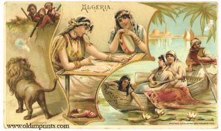 Algeria. Arbuckle Bros. Coffee Co. trade card: vignette illustrations. NORTH AFRICA