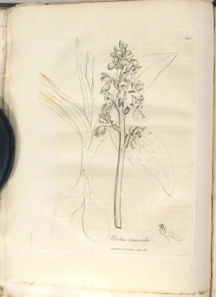 Medical Botany: Containing Systematic and General Descriptions, with Plates of all the Medicinal Plants, Indigenous and Exotic, Comprehended in the Catalogues of the Materia Medica...Second Edition. Vol. IV.