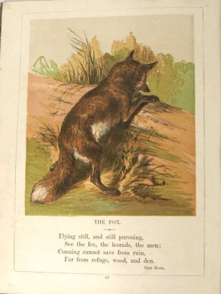 The Child's Pictorial Museum of Birds, Beasts, and Fishes. VICTORIAN ANIMALS - COLOR PLATES,...