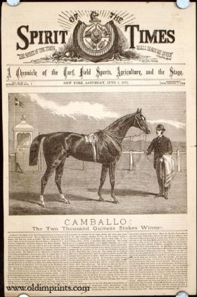 Camballo: The Two Thousand Guineas Stakes Winner. HORSE RACING