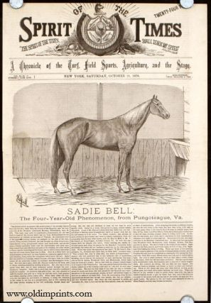 Sadie Bell: The Four-Year-Old Phenomenon, from Puntoteague, Va. HORSE RACING