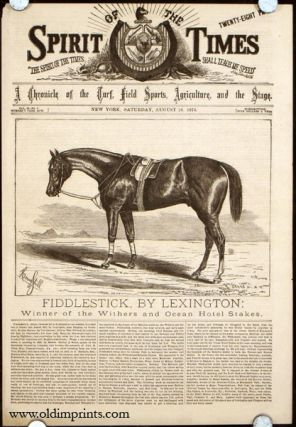 Fiddlestick, By Lexington: Winner of the Withers and Ocean Hotel Stakes. HORSE RACING