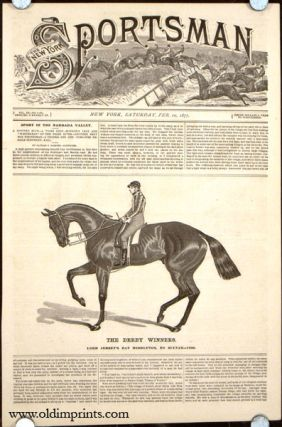 The Derby Winners. Lord Jersey's Bay Middleton, by Sultan---1836. HORSE RACING
