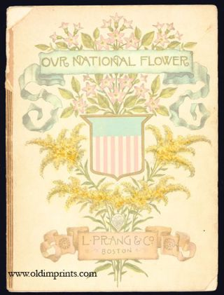 Our National Flower. Which Shall It Be? CHROMOLITHOGRAPHS