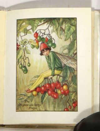 Flower Fairies of the Autumn with the Nuts and Berries they bring. Poems and Pictures.