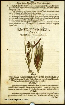 Frumentum Indicum. GERMAN HERBAL - CORN