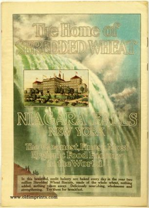 Sunday Magazine of the Minneapolis Journal. NEW YORK - NIAGARA FALLS