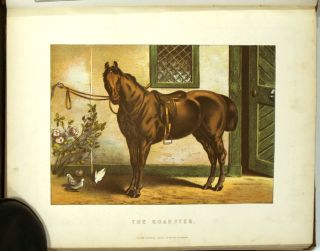 Modern Practical Farriery, A Complete System of the Veterinary Art as at Present Practised at the Royal Veterinary College, London.