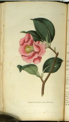 The Botanical Magazine; or Flower-Garden displayed...
