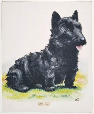 Jeannie. SCOTTISH TERRIER PAINTING. DOGS - SCOTTIE DOG