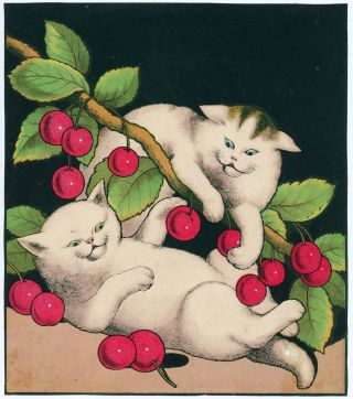 [FOUR Untitled Victorian prints of white cats].